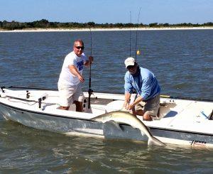 Charleston Sharks